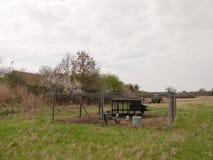 nature extérieure de champ de ferme de porte de barrière de coup de poule de poulet Photos libres de droits