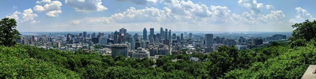 Nature facing urbanization city of Montreal