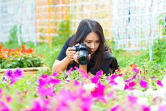 Nature female Photographer woman taking pictures outdoors in flo Stock Photography