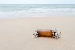 Nature fight against coast and sea pollution. Stock Image