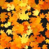 Foliage autumn backdrop illustration Royalty Free Stock Image