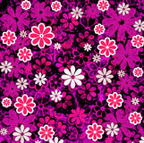 Nature Floral Pattern Pink Royalty Free Stock Photography