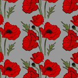 Nature floral poppy pattern vector image. Red petal nature plants isolated on blue background. Botany spring summer. Blossom decoration royalty free illustration