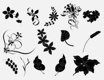 Nature florale réglée Image libre de droits