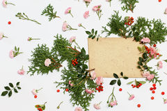Nature florals elements and old envelope on white. Pink roses the fairy, cotoneaster red berries and thuja occidentalis Danica evergreen plants arranged around Royalty Free Stock Photography
