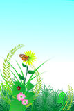 Nature flower background. `Nature background with flower, butterfly, grass, etc, vector illustration Royalty Free Stock Photo