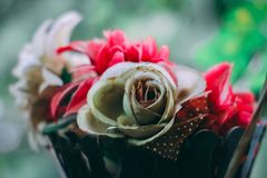Beautiful Flowers Background - photo of flowers with shallow depth of field. Nature Flowers Background - photo of flowers with shallow depth of field Stock Photos