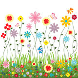 Nature of flowers vector for cute card or website decorating Royalty Free Stock Images