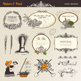 Nature & food vector elements royalty free illustration