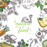 Nature food vector poster. Vintage frame with fruit, vegetables in vintage style.  Royalty Free Stock Photography