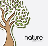 Nature forest design Royalty Free Stock Photos