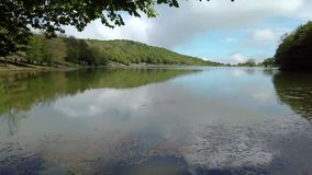 Nature, forest lake landscape with sky and clouds stock video footage