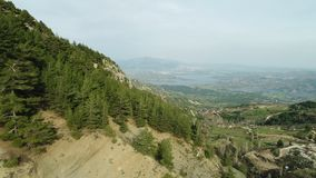 Nature Forest and Mountain Aerial View 7