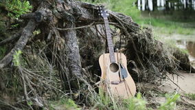 Nature. The Forgotten guitar near the lake. Dry old stump with roots thrown on the shore stock footage
