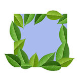 Nature frame with green leaves illustration. Leaf frame on square, blue background. Square shape cut from white paper, with green leaf under and on it. Vector Stock Images