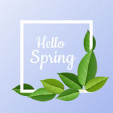Nature frame with green leaves. Nature frame with realistic green leaves. White square border on blue background, with hello spring message. Vector illustration Royalty Free Stock Images