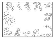 Nature frame with leaves on white background. Monochrome floral frame. royalty free stock photography