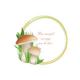 Nature frame with mushrooms. Royalty Free Stock Photos