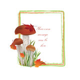 Nature frame with mushrooms. Fall decor. Royalty Free Stock Image