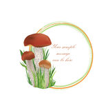 Nature frame with mushrooms. summer decor. Royalty Free Stock Photo