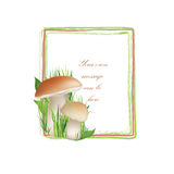 Nature frame with mushrooms. summer decor. Royalty Free Stock Photos