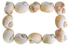 Nature Frame Stock Image