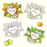 Nature frames with apple flowers and leaves. Vector nature frames with flowers, apples and colorfull autumn leaves.Vintage Design Elements. Labels in retro Royalty Free Stock Images