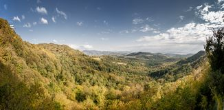 Nature of Georgia Stock Image