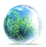 Nature in glass bubble Stock Photos