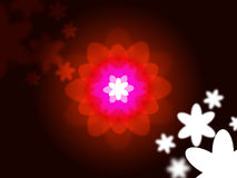 Nature Glow Represents Light Burst And Natural Royalty Free Stock Photography