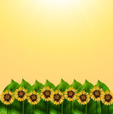Nature and graphic garden on yellow background. Stock Photos