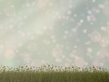 Nature with grass and bokeh background - 3D render Stock Images