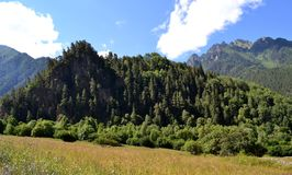 Nature of the Greater Caucasus. Photo taken on: July 27 Saturday, 2013 Royalty Free Stock Image