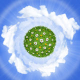 Nature green grass planet with flowers Stock Photo