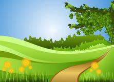 Nature, Green, Grassland, Ecosystem royalty free stock photography