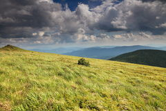 Nature. Green mountain landscape. Royalty Free Stock Photo