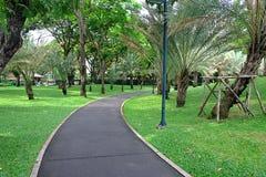 Nature. Green park Royalty Free Stock Photo
