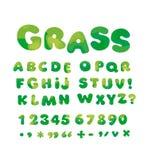 Nature green soft curve typeface alphabet. Stock Photos