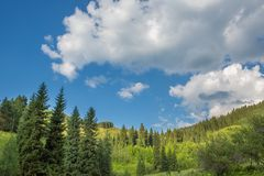 Nature of  green trees and blue sky, near Medeo in Almaty, Kazakhstan,Asia Royalty Free Stock Photos