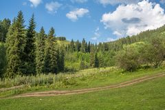 Nature of  green trees and blue sky, road on Medeo in Almaty, Kazakhstan,Asia Stock Photo
