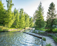 Nature of  green trees and cascade of river near Medeo in Almaty, Kazakhstan Royalty Free Stock Image