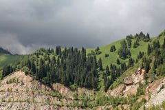 Nature of green trees and mounts, near Medeo in Almaty, Kazakhstan,Asia Stock Photos