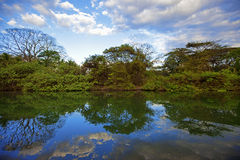 Nature in Guanacaste Stock Photos