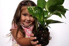 Nature in Hand Stock Photo