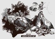 Nature hand drawn vector set royalty free illustration