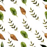 Nature hand drawn watercolor nature seamless. Nature hand drawn watercolor seamless pattern with brunch Royalty Free Stock Image