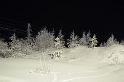 Nature in Hanty-Mansiysk Okrug. Photo getting in Hanty-Mansiysk Okrug/Cold Stock Images