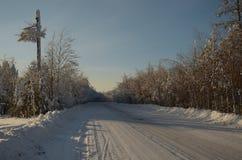 Nature in Hanty-Mansiysk Okrug. Photo getting in Hanty-Mansiysk Okrug/First Snow Stock Image