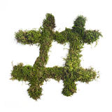 Nature Hashtag. A hashtag symbol made of green moss Royalty Free Stock Photography