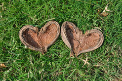 Nature heart Stock Images